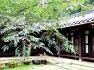 아홉산숲 관미헌